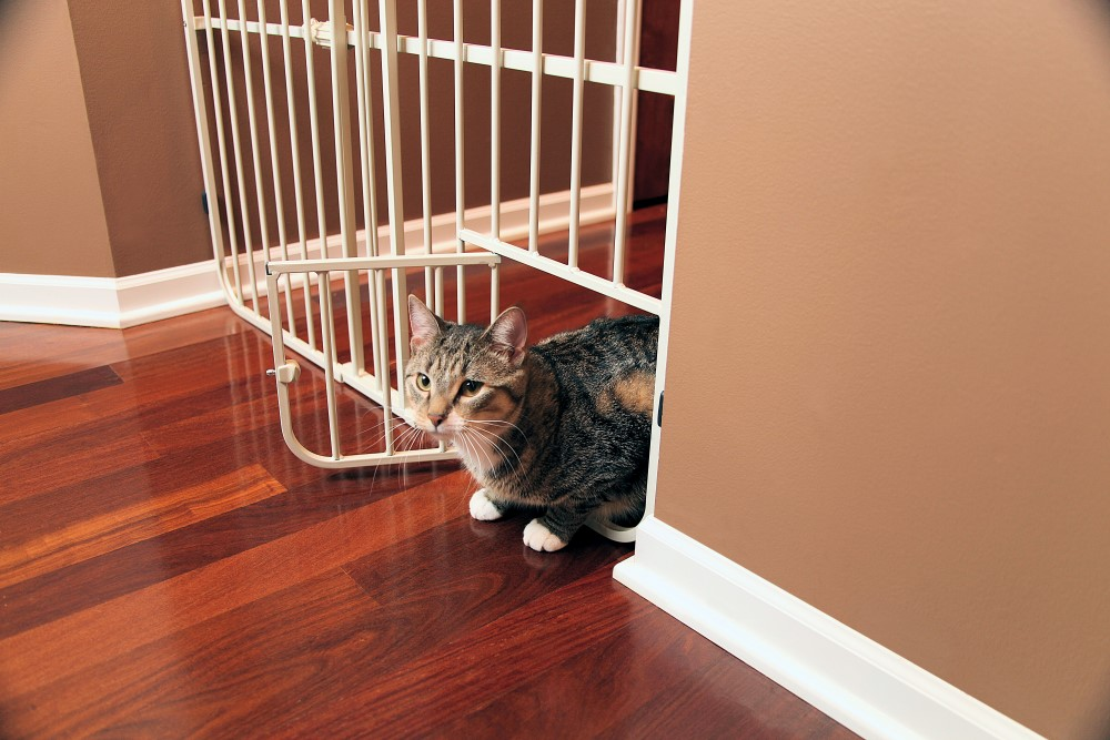 Big Tuffy Expandable Gate with Small Pet Door - Click Image to Close
