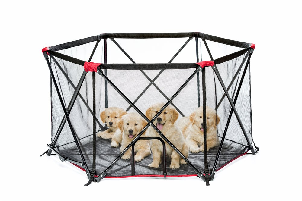 6-Panel Portable Pet Pen - Click Image to Close