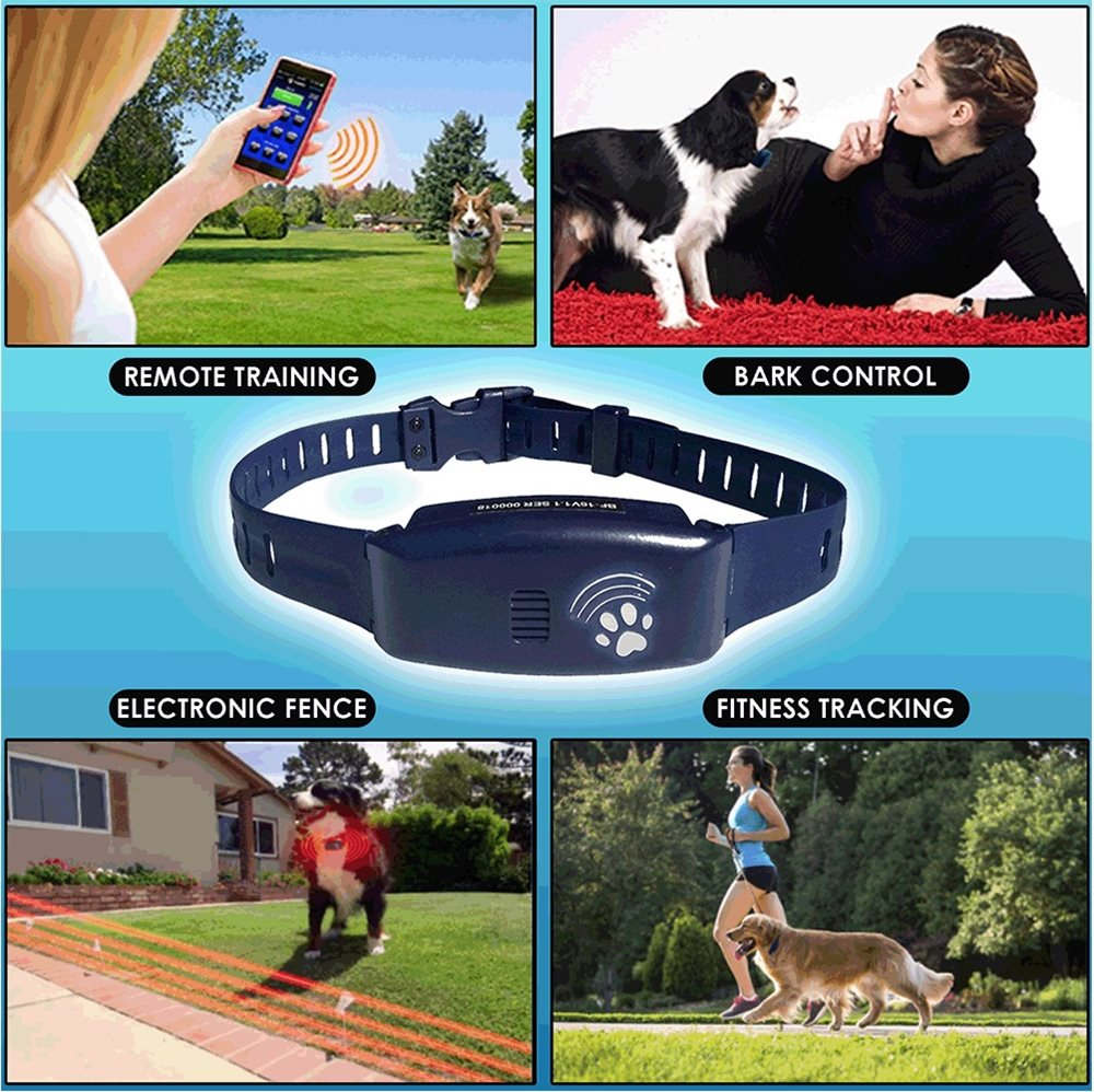 Bluefang 4-in-1 Super Collar - Click Image to Close