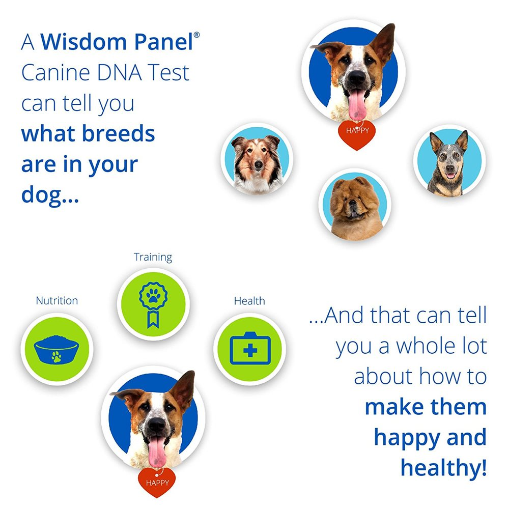 Canine DNA Test Kit 3.0 - Click Image to Close