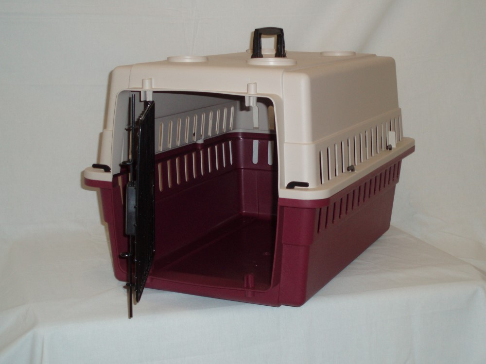Protective Carrier/Crate - Junior - Click Image to Close