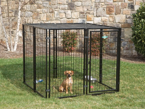 Cottageview Dog Kennel - Click Image to Close
