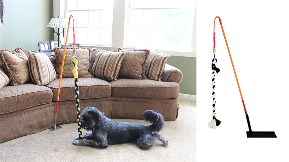 Indoor Tether Tug - Click Image to Close