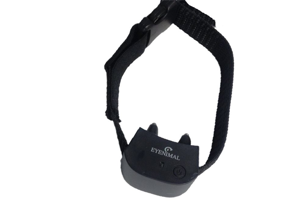 Miniature Collar for Eyenimal Containment Fence - Click Image to Close