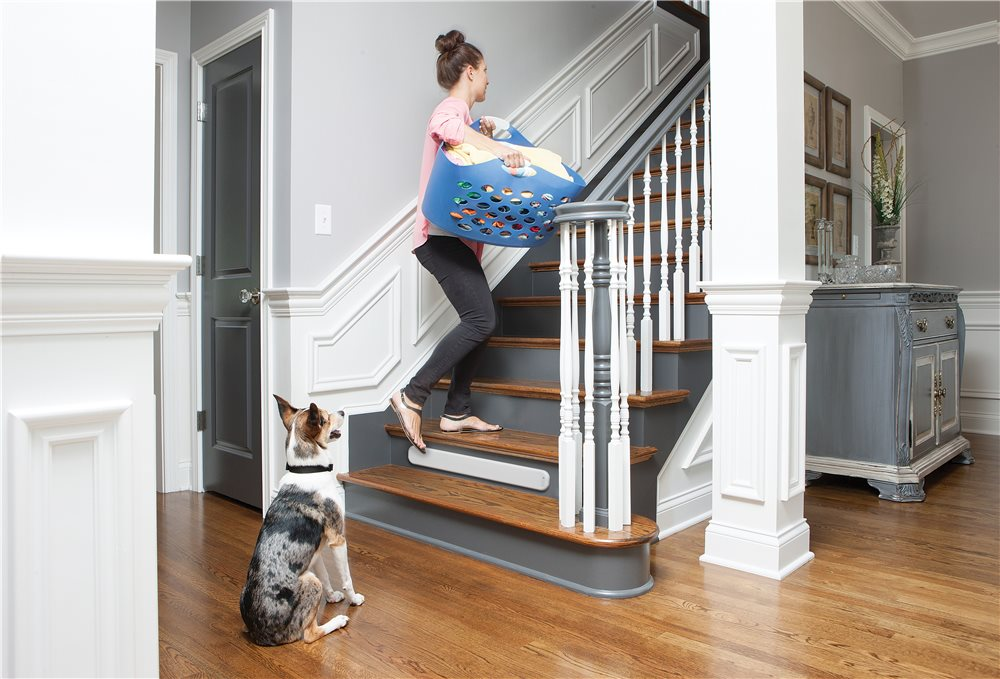 Pawz Away Threshold Pet Barrier - Click Image to Close